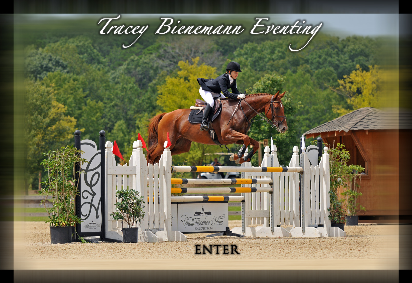 Enter Tracey Bienemann Eventing